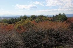 秋の散策会2014‐10