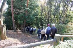 秋の散策会2014‐11